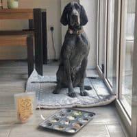 Natural Dog Treats - Minty Breath Bones